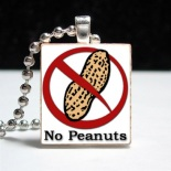Peanut Allergy Stacy